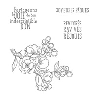 Indescriptible don Clear Stamp Set (French) by Stampin' Up!