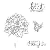 Best Thoughts Clear-Mount Stamp Set