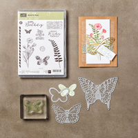 Butterfly Basics Photopolymer Bundle