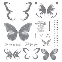 Watercolor Wings Photopolymer Stamp Set