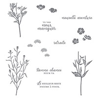 Fleurs de l'âge Photopolymer Stamp Set (French) by Stampin' Up!
