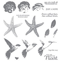 Picture Perfect Photopolymer Stamp Set by Stampin' Up!