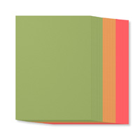 Fruit Stand A4 Cardstock