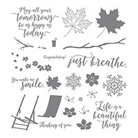 Colorful Seasons Photopolymer Stamp Set