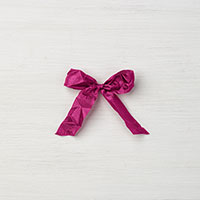 "Berry Burst 5/8"" Crinkled Seam Binding Ribbon"