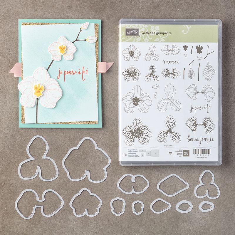 des orchidées… – les ateliers de mima
