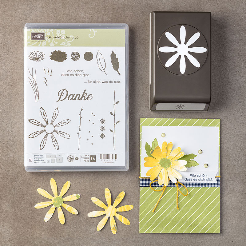 Produktpaket Gänseblümchen