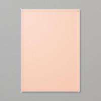Petal Pink A4 Cardstock