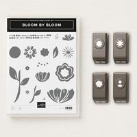 Bloom By Bloom Photopolymer Bundle
