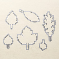 Stampin Up Product 138283