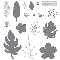 Ensemble de timbres pour photopolymères Botanical Blooms