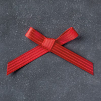 Real Red 3/8 (1 cm) Stitched Satin Ribbon
