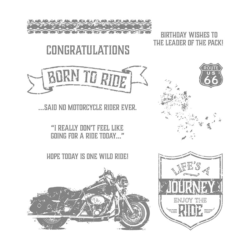 One Wild Ride Clear Mount Stamp Set By Stampin Up