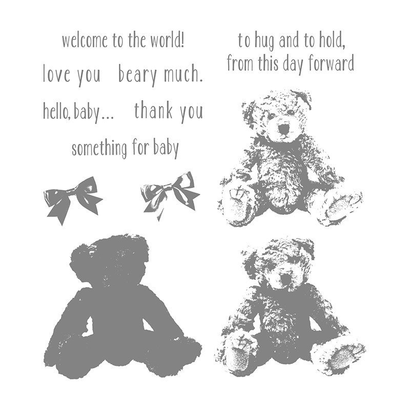 Baby Bear Photopolymer Stamp Set By Stampin Up