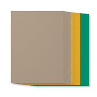 Party Animal A4 Cardstock Pack