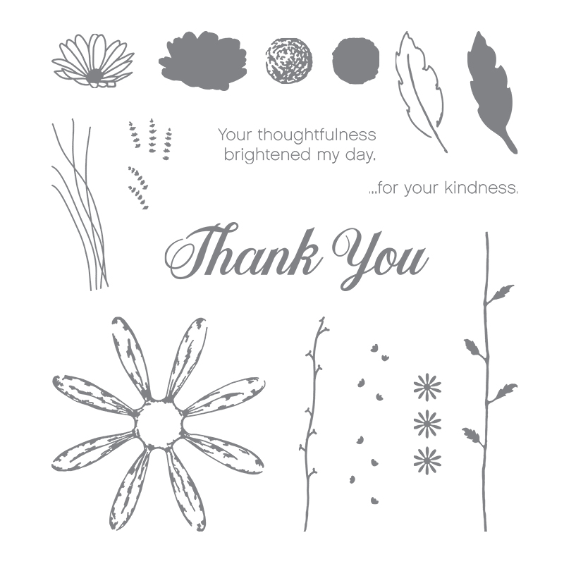 Daisy Delight Photopolymer Stamp Set By Stampin Up