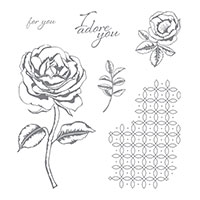 Stampin Up Product 143846