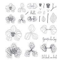 Stampin Up Product 144439