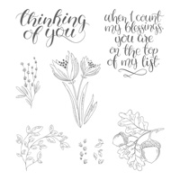 Count My Blessings Wood-Mount Stamp Set