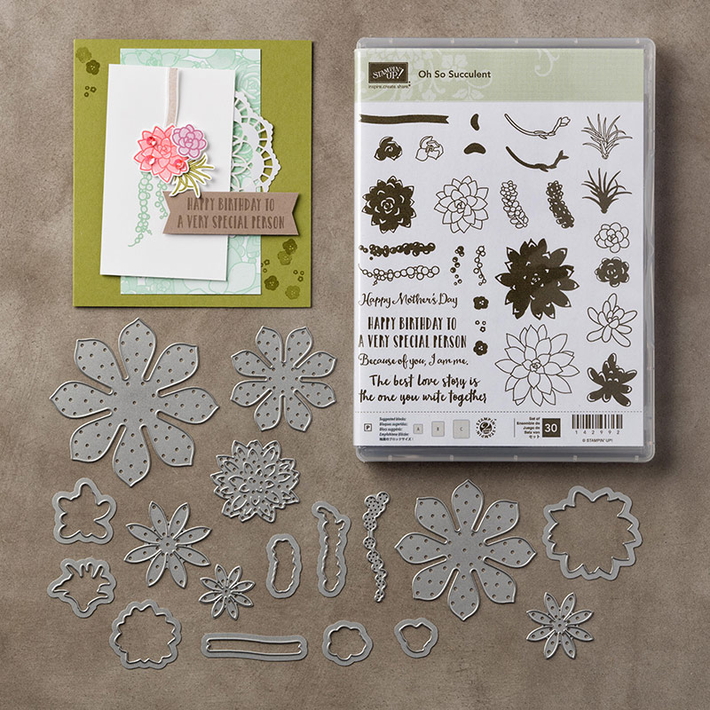 Oh So Succulent photopolymère Bundle