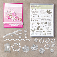 Colorful Seasons Photopolymer Bundle