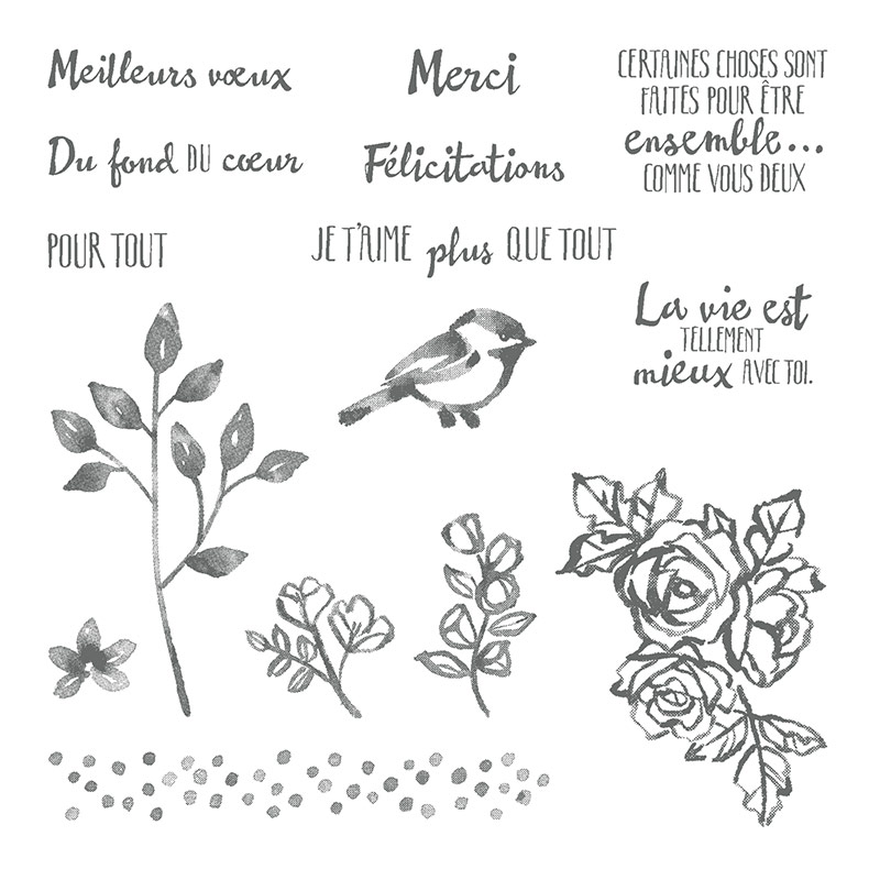 Palette de petales Set de tampons transparents (français)