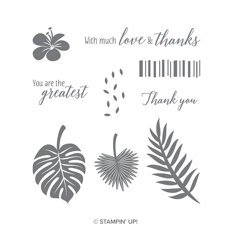 Tropical Chic Clear Mount Stamp Set By Stampin Up