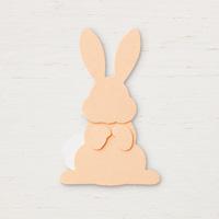 Bunny Builder