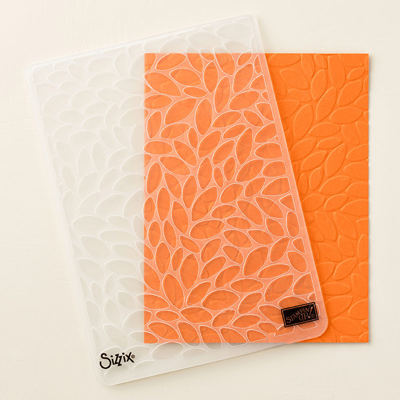Petal Burst Textured Impressions Embossing Folder
