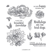 beautiful friendship stampin up