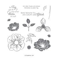 stempelset florale freude stampin up