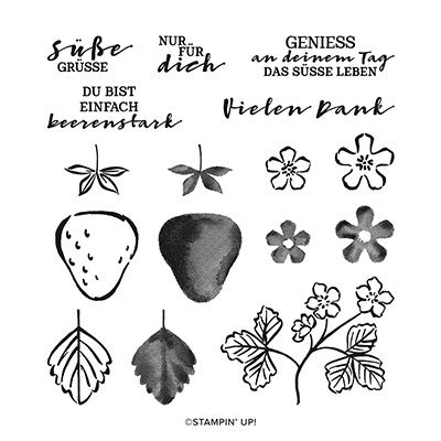 Stampin Up Product 154946